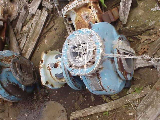 Goulds Model L Lined pump.  No base or motor.