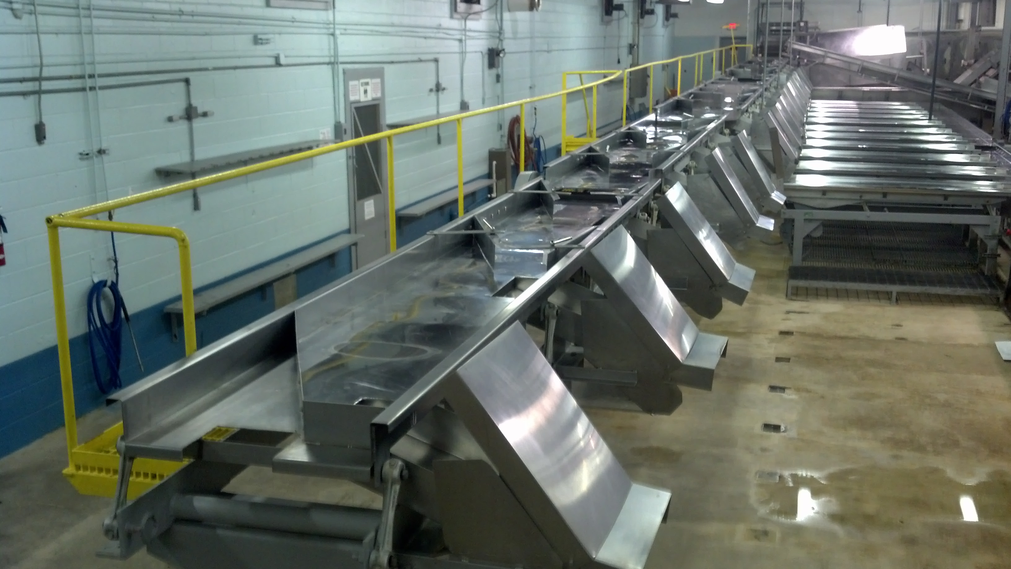 Commercial Manuf & Supply Co stainless steel, sanitary/food, vegetable processing line.  Vibratory feeder/conveyor sorting and inspection processing line consisting of the following: (12) Each (Ref GF-FT1 - 12) Vibratory feeder inspection tables, approx 24